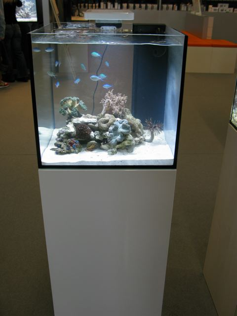 Reefing the australian way forums view topic the best for Aquarium recifal nano